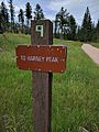 Black Elk Peak hike 37.jpg