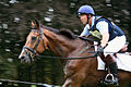 Blenheim Horse Trials 1.jpg