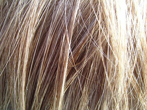 Blonde hair detailed