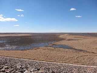 Bonny Dam