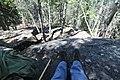 Bonsai Boulders Kananaskis Alberta Canada (26828555612).jpg