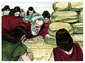 Book of Genesis Chapter 8-14 (Bible Illustrations by Sweet Media).jpg