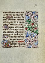 Book of Hours of Simon de Varie - KB 74 G37 - folio 031r.jpg