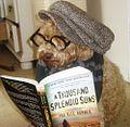 Books-dog-hipster-kite-reading-Favim.com-189949.jpg