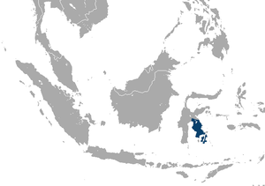 Booted Macaque area.png