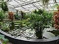 Botanischer Garten Gießen 03.JPG