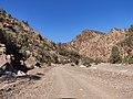 Brachina Gorge (43839063534).jpg