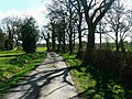Bridleway, Burridge Heath - geograph.org.uk - 1246000.jpg