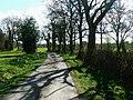 Bridleway, Burridge Heath - geograph.org.uk - 1246000.jpg