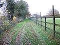 Bridleway, Lambourn Woodland - geograph.org.uk - 1651930.jpg