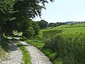 Bridleway and Nant Cou, Ceredigion - geograph.org.uk - 902054.jpg