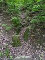 Brno, Wilsonův les (11).JPG