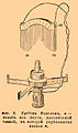 Brockhaus and Efron Encyclopedic Dictionary b12 819-0.jpg