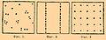 Brockhaus and Efron Encyclopedic Dictionary b63 325-0.jpg