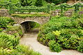 Brodsworth Hall gardens (9087).jpg
