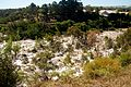 Buckley's Falls viewed from the Geelong suburb of Highton.jpg