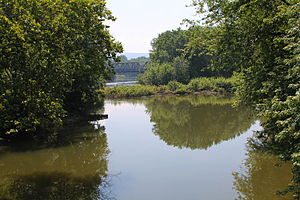 Buffalo Creek (West Branch Susquehanna River) - Buffalo Creek looking downstream near its mouth