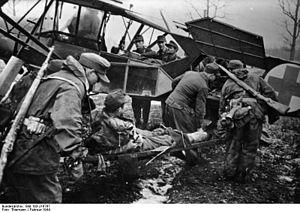 Pinsk Marshes - Wounded German soldiers being evacuated on a light plane in the southern zone of the Pripet Marshes. 1944