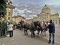 Bundeshaus , Swiss Parliament Bern ( Ank Kumar ) 02.jpg