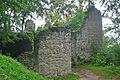 Burgruine-Neuenfels.jpg