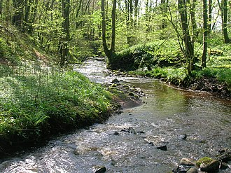 Galston, East Ayrshire - A view of the Burnanne at Bank Wood Bridge.