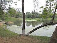 Burnpur Nehru Park 5