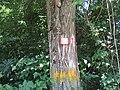 CAI 619 Segnavia 02.jpg