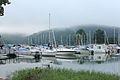 CL Claytor Lake Ness Monster (17099210035).jpg