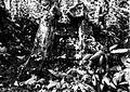 COLLECTIE TROPENMUSEUM Ruïne in het bos bij de rubber- en theeplantage Goenoeng Manik omgeving Lampegan TMnr 60016458.jpg