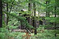 Cabin in the woods at Douthat State Park (39880027191).jpg