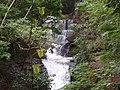 Cachoeira do Parque Arthur Tomas - panoramio.jpg