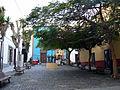 Calle Vandale-1.jpg