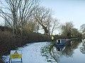 Canal Tree Felling - geograph.org.uk - 1690435.jpg