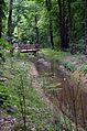 Canal du Boiron Tolochenaz (3).JPG