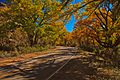 Canyonlands National Park…Needles area (6294476936).jpg