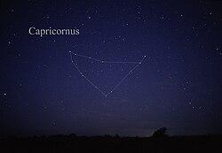 definition of capricornus