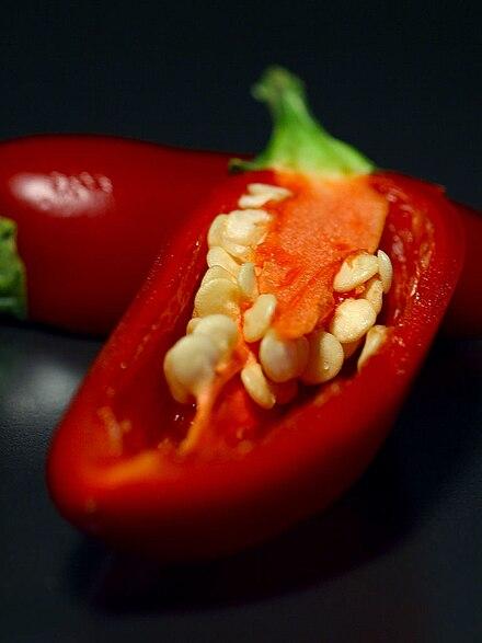 Buch 2.0 pepper pdf chili
