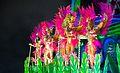 Carnaval 2014 - Rio de Janeiro (12974010473).jpg