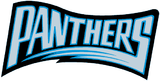 Carolina Panthers 1995 wordmark.png