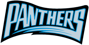 1995 Carolina Panthers season - Image: Carolina Panthers 1995 wordmark