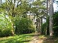 Carpenders Park Lawn Cemetery, Woodland Walk - geograph.org.uk - 1273866.jpg
