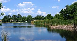Casselberry, Florida - North Triplet Lake in Casselberry, Florida