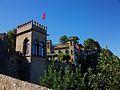 Castell de Xàtiva, gat.JPG