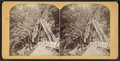 Cathedral stairs, from Robert N. Dennis collection of stereoscopic views.png