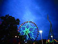 Cedar Point Giant Wheel and Wicked Twister at night (9287876477).jpg