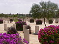 Cemetery at El Alamein - Flickr - heatheronhertravels (3).jpg