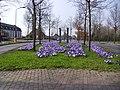 Chaam Spring time Pays bas - panoramio.jpg