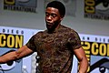 Chadwick Boseman (36203769106).jpg