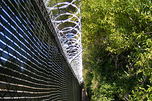 Barbed tape - Razor wire—long-barb type on top of a chain link privacy-fence surrounding a utility power sub-station