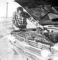 Charles Yoder checking oil (7449941612).jpg